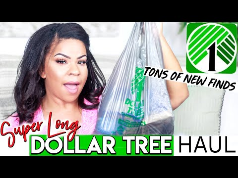DOLLAR TREE HAUL 2019! What's NEW At The DOLLAR STORE?!? | Sensational Finds