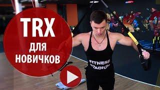 Александр Мельниченко - TRX для начинающих