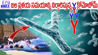 Y Chromosome Confirms Noah's Flood Time Line 4500 Years ||BibleUnknownFactsTelugu||