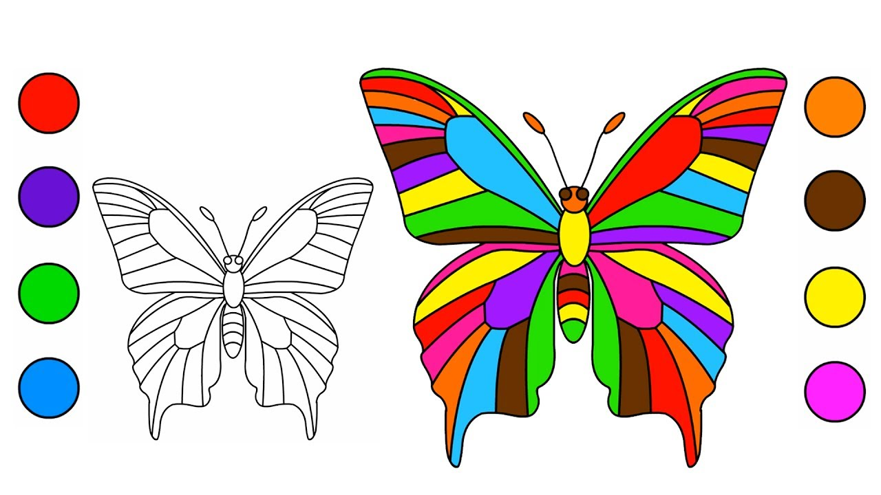 Giant Butterfly Coloring Pages