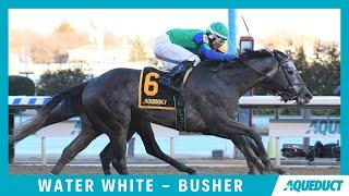 Water White - 2020 - Busher Invitational