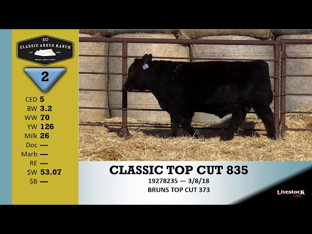 Classic Angus Ranch Lot 2