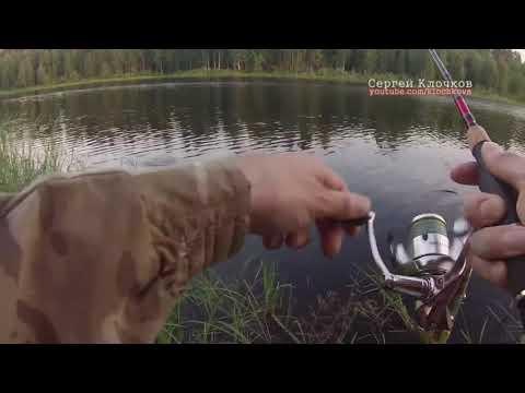 летняя рыбалка на спиннинг - 2016-06-16 10:37:08
