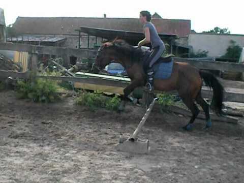 amandine a cheval