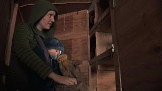 Homesteading With A Newborn | Alaska: The Last Frontier