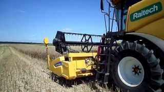 #6 Żniwa rzepakowe 2013 ☆ New Holland CX 5080-T6.175 ☆ *HD*