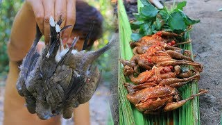 Finding and Cooking Wild Bird (Dove) Recipe Eating Delicious