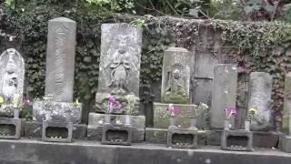 鎌倉石仏百選ー『称名寺』(金沢文庫)の仁王門の前にある石仏群