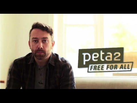 Tim McIlrath of Rise Against: Animals Don't Choose to Perform
