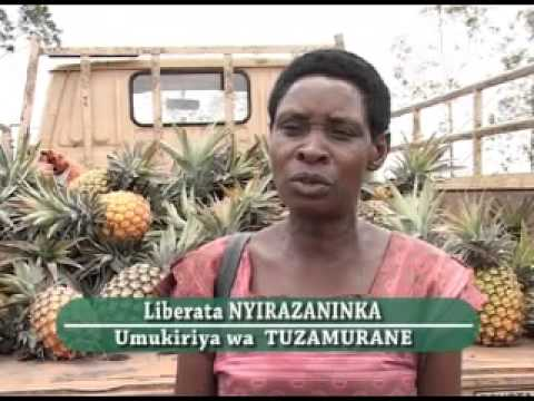 Cooperatives in fight against poverty | August 2008
