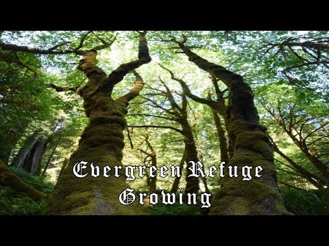 Evergreen Refuge - Growing (Full Album)