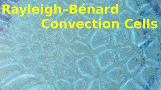Rayleigh-Bénard convection cells