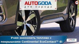 Учим экономить топливо с покрышками Continental EcoContact 6! Обзор «AUTOGODA для народа»