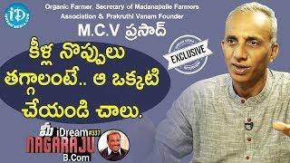 Prakruthi Vanam Founder M.C.V. Prasad Full Interview || మీ iDream Nagaraju B.Com #337