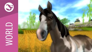 Star Stable World - American Paint Horse(, 2015-08-13T07:00:01.000Z)