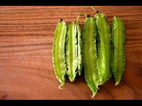 What Are The Health Benefits Of Winged Bean For Your Body And Beauty