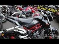 2017 Benelli tnt 125 and Honda Grom sf