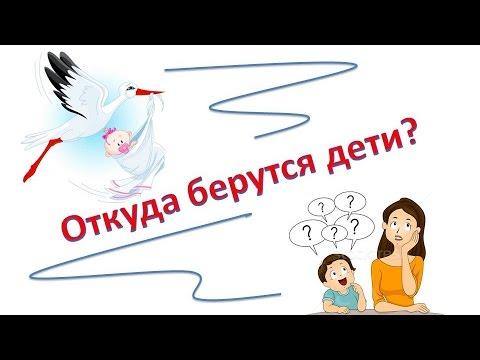 Обучающее видео детям осексе