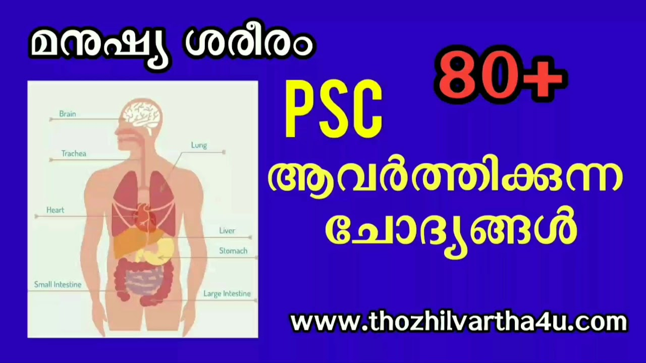 Kerala Psc Human Body Questions And Answers Youtube