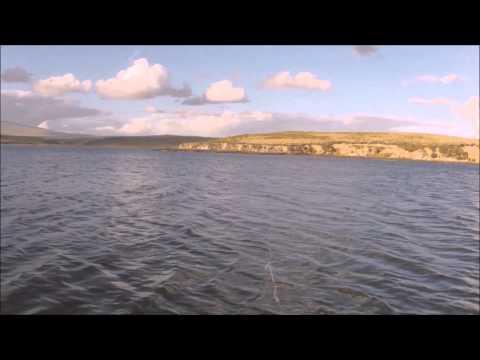 Falklands 4 months Sea Trout Fishing