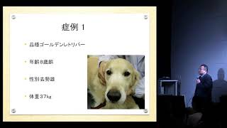 がんの犬に対するマイタケDフラクションの効果