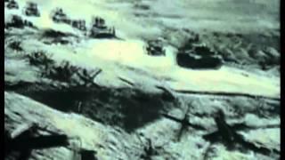 Kriegsdoku Box -  Deutsche Panzer