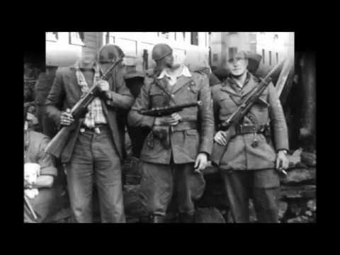 Italian Submachine Guns 1914 to 1945