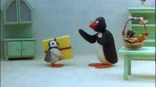 Pingu - Kadopapier