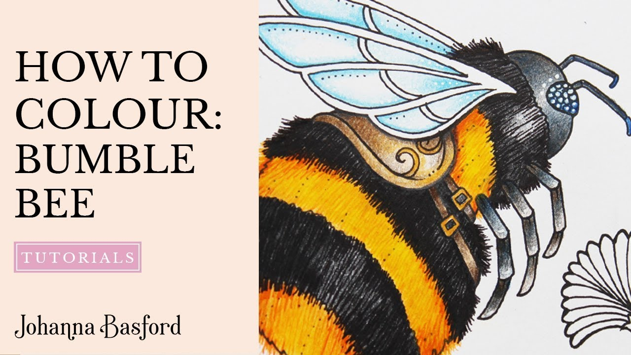 tutorial how to colour a bumble bee youtube