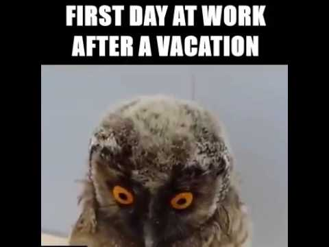 First day after vacation. - YouTube