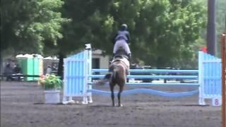 Pimpernel, Low Jr/AO Classic, Culpeper 2010