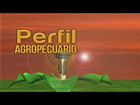 Programa Caprino en Brasil