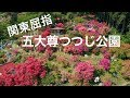 4K Drone Japan 関東屈指【五大尊つつじ公園】空撮ドローン
