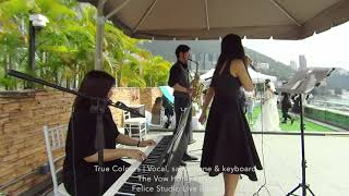 True Colours (Acoustic Trio) @The Vow - Felice Studio Live Band