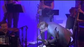 Trondheim Jazz Orchestra & Marius Neset - Birds