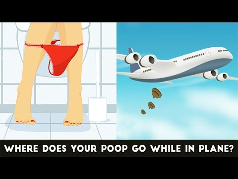 What Happens To Your Poop In An Airplane Toilet