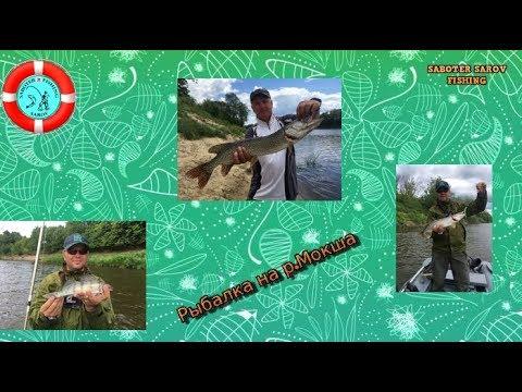 Трудовая рыбалка в Рязанской области.