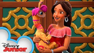 When the Royal Family's Away 👑  Discovering the Magic Within   Elena of Avalor   Disney Junior