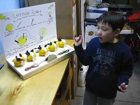 The Lemon Battery, Electricity from a Lemon - Joey