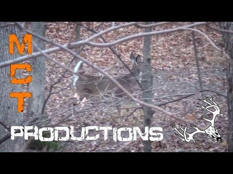 EPIC Shot,  Illinois Gun Deer Season