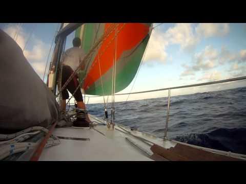 Sailing from Bora Bora to Niue (single-handed)