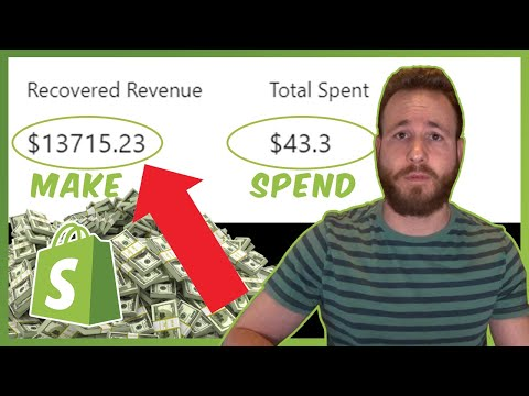 This App Made Me $13715 With $43 | Shopify Dropshipping