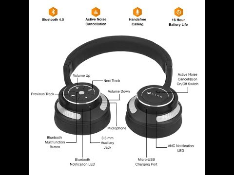 Paww WaveSound 3 - Detailed Review