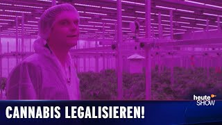 Staatlich lizenzierter Cannabis-Anbau – Lutz wird Drogendealer