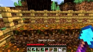 Minecraft Blocks & Items: Podzol