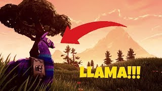 LOOT LLAMA*3 LLAMAS* IN THE SAME GAME! BRITE BAG MYTH BUSTED?!  Fortnite Funny and Best Moments