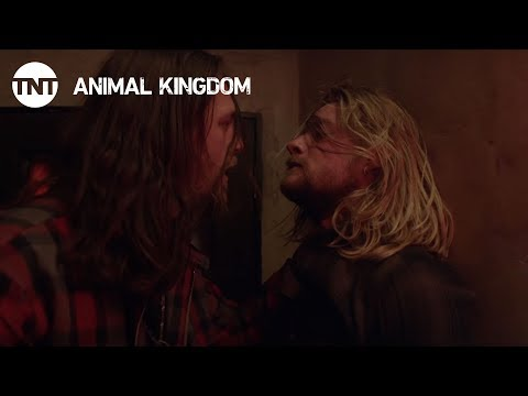 Thumbnail: Animal Kingdom: Broken Boards, Season 2 Ep.4 [CLIP #2] | TNT