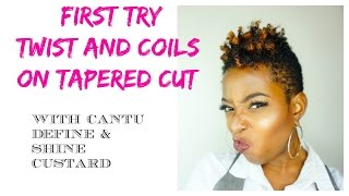 Twist and coils on fresh  4C tapered cut |Curl Sponge