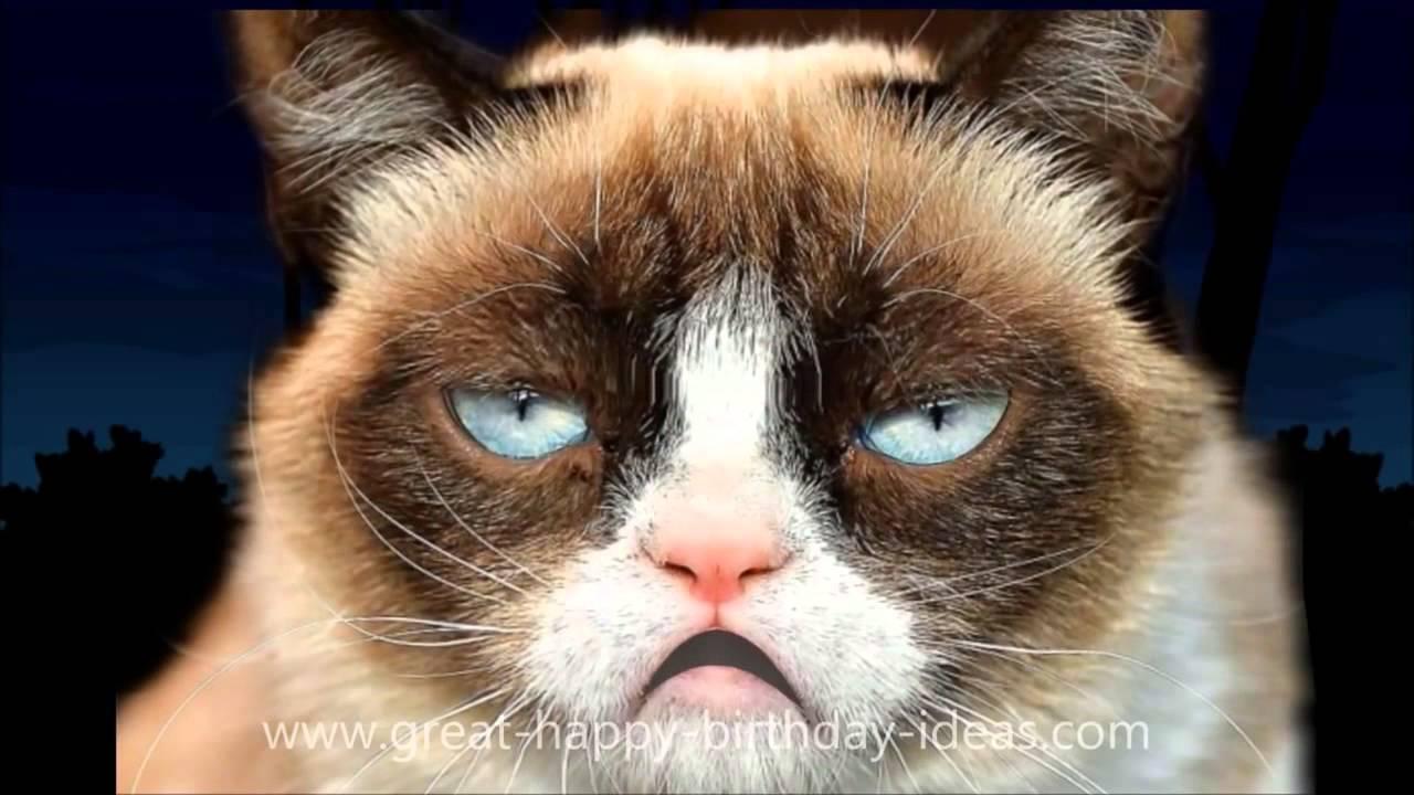 GRUMPY CAT HAPPY BIRTHDAY SONG - SHARE - YouTube