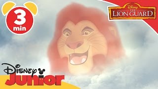 The Lion Guard | Bunga the Wise | Disney Junior UK